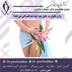 واژن-بانوان-در-طول-عمر-خود-چه-تغییراتی-می-کند؟